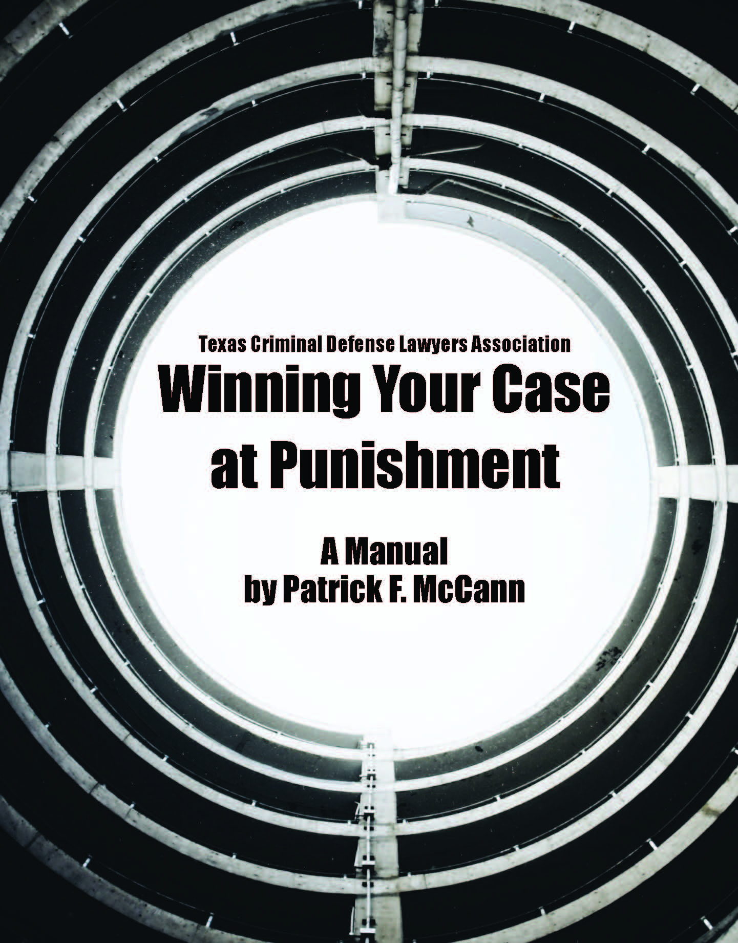 Winning Your Case At Punishment: The Punishment Manual 2020